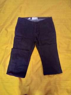 Springfield ankle pants