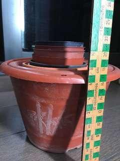 Gardening Pots Plants Flora