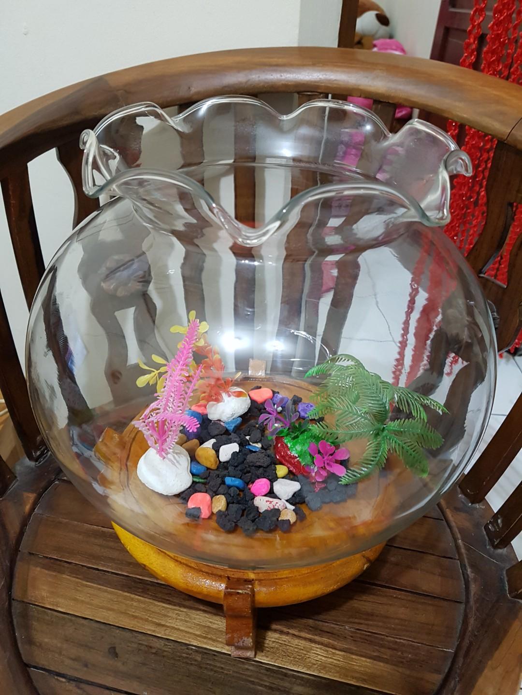 1 Set Aquarium Bulat Kaca 12liter Pet Supplies Accessories