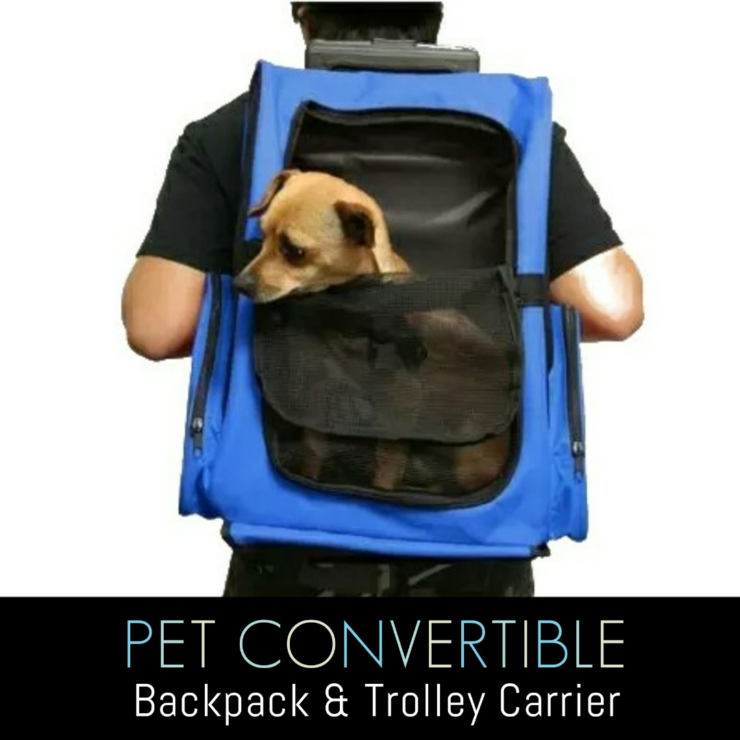 Convenient 2-In-1 Pet Carrier Trolley Backpack Convertible for your  Convenience  Cat, Dog, Bunny Carrier  Free Delivery