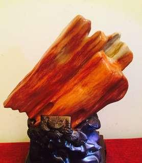 稀有红木化石30cm