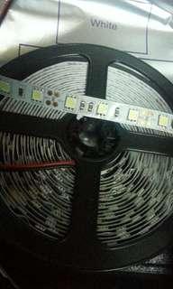 Led 5050(3200k白)燈帶$100/2餅,不設退換。