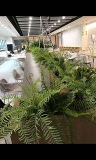 Artificial plants decorations