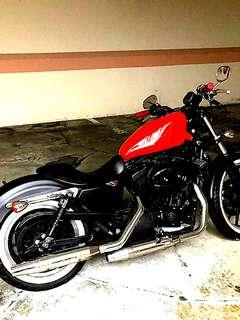 Harley Davidson XL883L Sportster for sale. 9 more years to go