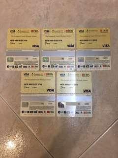 SYOG 2010 Visa Card