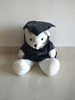 🎓 NUS Graduation bear 🎈