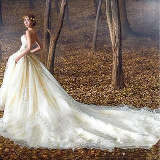 Wedding Gown ball gown bridal gown Champaign color