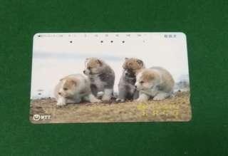 日本電話卡 狗仔 33