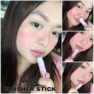 Clay Blusher Stick
