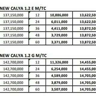 New calya Dp 13jtan