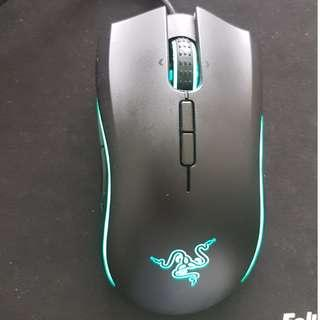 [Mamba Tournament Edition Mouse]