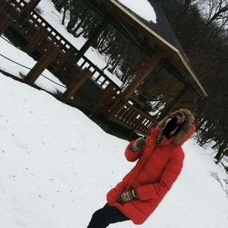 UNIQLO Winter feather jacket