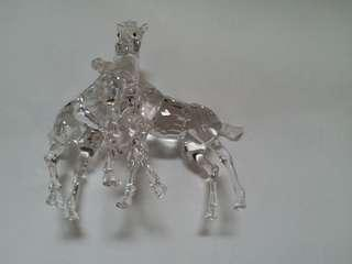 Swarovski Crystal Foals with box