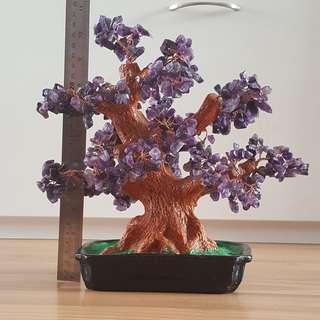 New Feng Shui Bonzai Gem tree