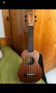 Ukulele with bags and free delivery