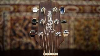 Takamine D5N Natural CLEARANCE