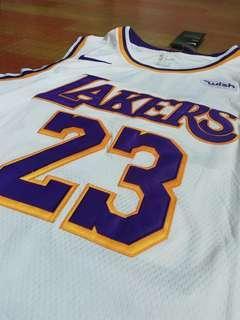LeBron Lakers Alternate Jersey