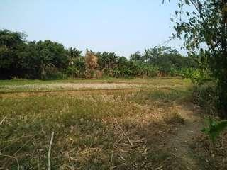 Jual Tanah Ukuran 16.000m2/ 1.6 Hektar