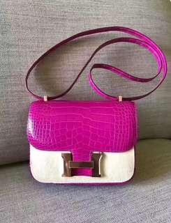 HERMES Constance Alligator