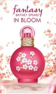 Britney Spears Fantasy in Bloom 100ml EDT