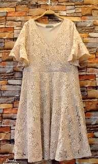 🚚 蕾絲荷葉袖洋裝