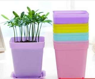 Mini 5 colour vase 迷你五色小花盆