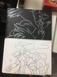 Pokemon Black and White Guidebook