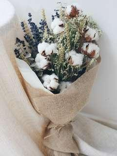 Original Dried Cotton Flowers