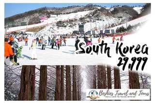 5D4N Winter Wonderland at Seoul Korea