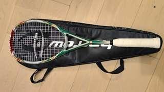 Squash racket harrow with case