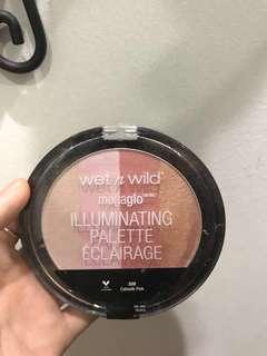 Wet n Wild Illuminating Palette
