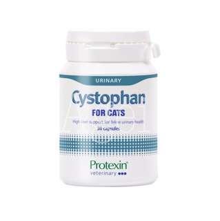Cystphan 30粒