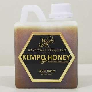 100% Madu Asli NTB Kempo Bima Honey 500 ML