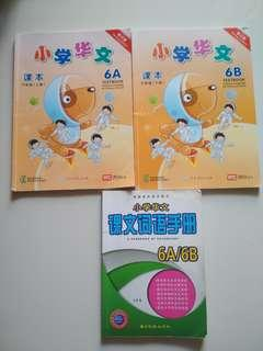 Bundle! Chinese Text Books 6A/6B with Vocab Handbook