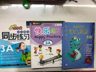 P3 Chinese assessment Books