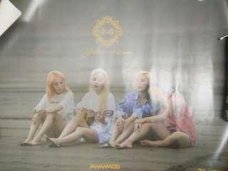 Wts MAMAMOO OFFICIAL POSTER YELLOW FLOWER & PURPLE