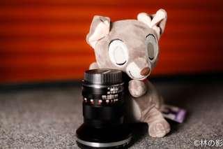Disney Grey Dog