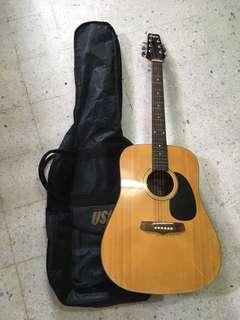 Hofma Classic Guitar