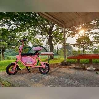 52v Tempo v2 minimotors