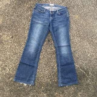 American Eagle Outfitters Flared Denim Jeans