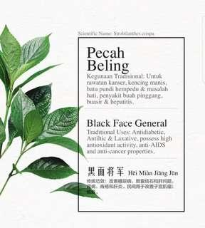 Black face general leaves - 29 leavrs per pks