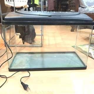 2ft Fish Tank w Light & Overhead Filter