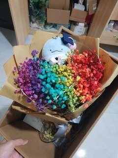 (Last set!) Graduation San-x Rainbow baby breaths bouquet