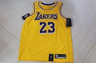 🏀亞洲成人尺碼🏀NBA Nike LA Lakers Lebron James Swingman Jersey Asian Adult Size湖人勒邦占士球衣