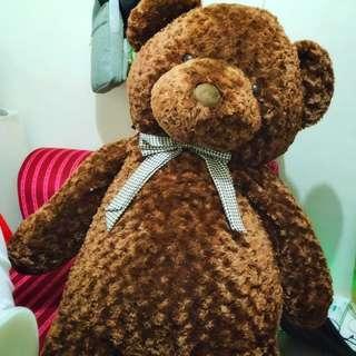 5ft tall Bear Stuffed Toy