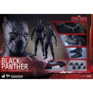 Hottoys MMS363 1:6 黑豹 Black Panther Civil War