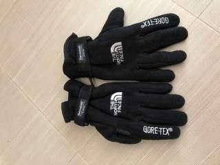The North Face X GORE-TEX Gloves