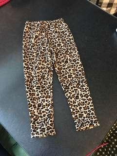 Size9 豹紋冬天 保暖 厚身 爪毛底 長褲 貼身褲