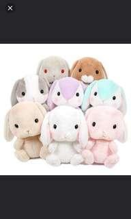 Search for Pote Loppy Plush