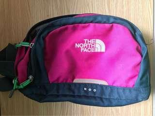 North Face Roo Lumbar Pack (Pink and Green)